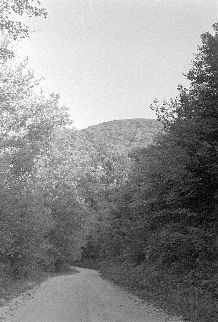 Scan-171219-0021.jpg