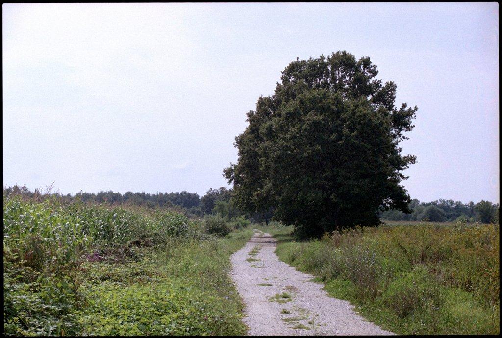 Scan-141011-0006-3e.jpg